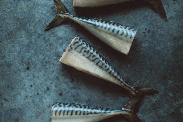 makreel schoonmaken